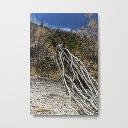 The Desert Sentinel Metal Print
