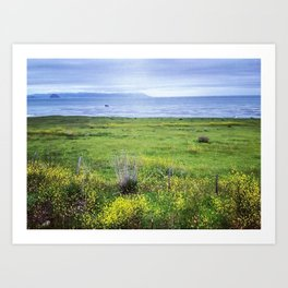 cayucos, california Art Print