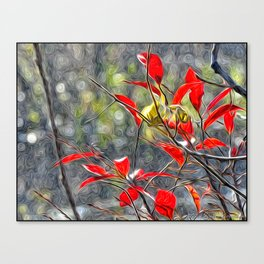 Red Served on Circles Canvas Print