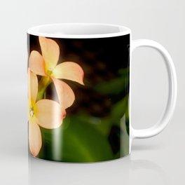 Kalanchoe Blossfeldiana 2 Coffee Mug