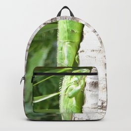 Just Hangin Out Backpack