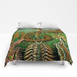 Chaetopoda Comforters