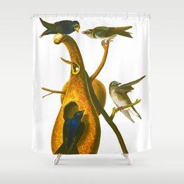 Purple Martin Bird Shower Curtain
