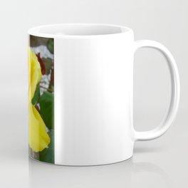 Beautiful Yellow Rose with Natural Garden Background Coffee Mug