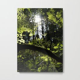 Dream Green Metal Print