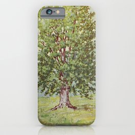Vintage Print - Familiar Trees and Leaves (1911) - Sugar Maple iPhone Case
