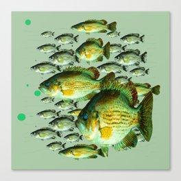GREENISH  SEA BASS FISHING GRAPHIC Canvas Print