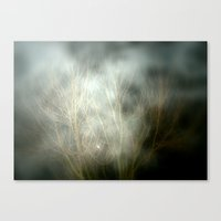 creepy Canvas Prints featuring Creepy by Chris' Landscape Images & Designs