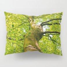 Sunlight Through Green Tree Crown Pillow Sham