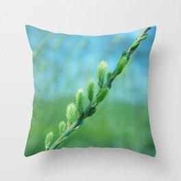 willow catkin Throw Pillow