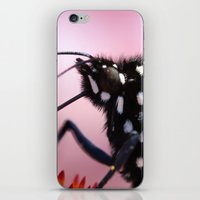 furry iPhone & iPod Skins featuring Furry Fellow by IowaShots