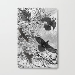 Krummi Metal Print