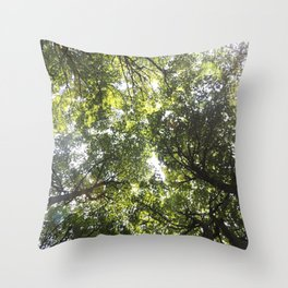 Looking up at the Trees Throw Pillow