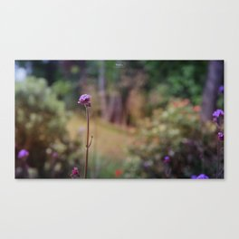 Colorful glass Canvas Print