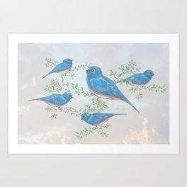 """"""" Bluebirds """" Art Print"""