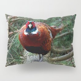 Pheasant Pillow Sham