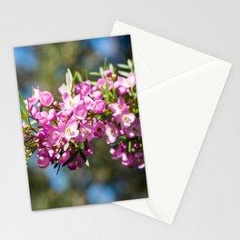 Small Pink Boronia, Muogamarra Nature Reserve, Sydney Stationery Cards