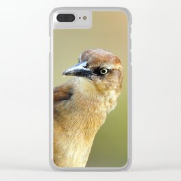 Female Great-tailed Grackle Clear iPhone Case