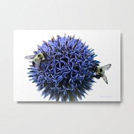 Working Bees Metal Print
