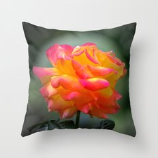 Rose 2138 Throw Pillow