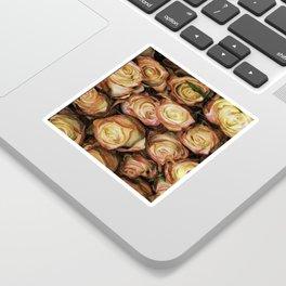 roses from ecuador Sticker