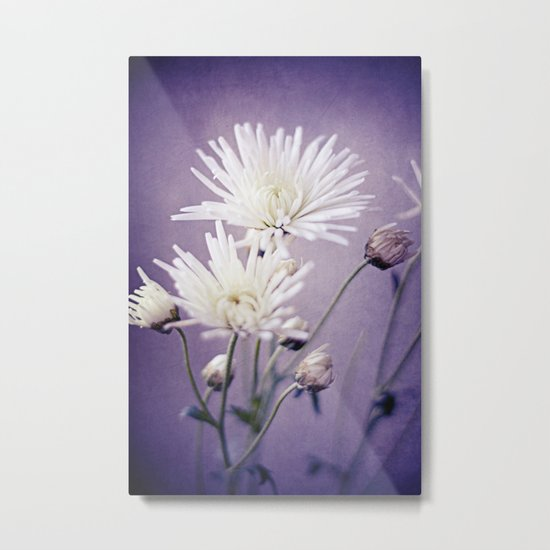 White on Purple Metal Print