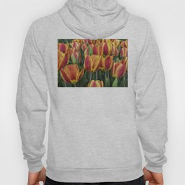 Orange Tulips on Cape Ann Hoody