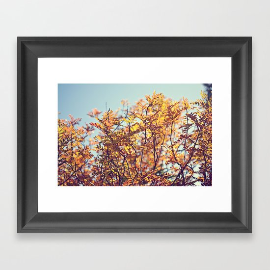 Mountain Fall Framed Art Print