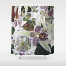 Longwood Gardens Orchid Extravaganza 75 Shower Curtain