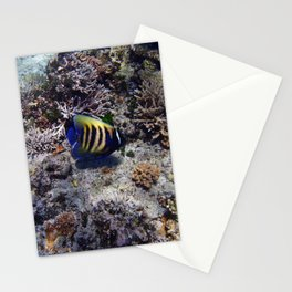 Fish on the Reef Stationery Cards