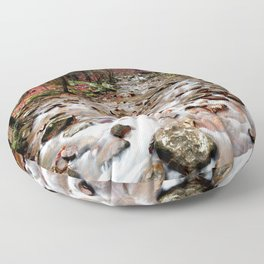 Panther Branch Trail Head Floor Pillow