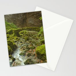 Stone bridge in Rakov Škocjan in Slovenia Stationery Cards