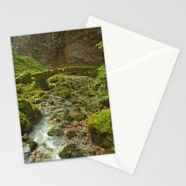 Stone bridge in Rakov Škocjan in Slovenia Stationery Cards