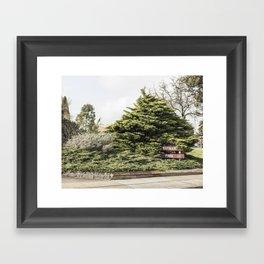 Batman Park Framed Art Print