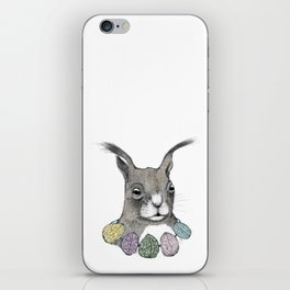 Squirrel loves color iPhone Skin