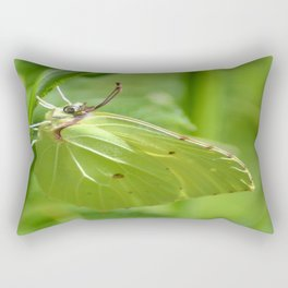 Zest de Citron Rectangular Pillow