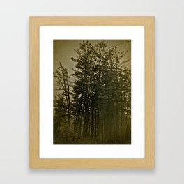 Asparagus Framed Art Print
