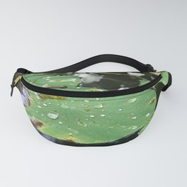 Water Lilies on a Pond Fanny Pack