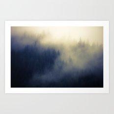 Shasha Forest Art Print