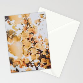 Spring Flowers VII Stationery Cards