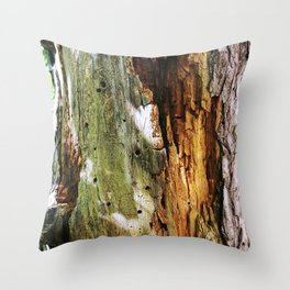 Decaying Trunk Throw Pillow
