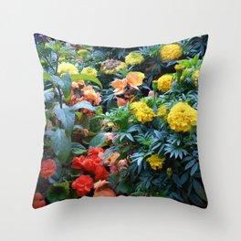 Splurge of colour Throw Pillow