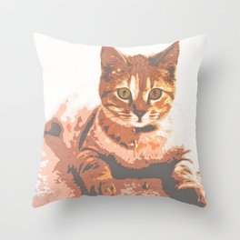 Brown Tabby Cat Lying on The Ground Throw Pillow