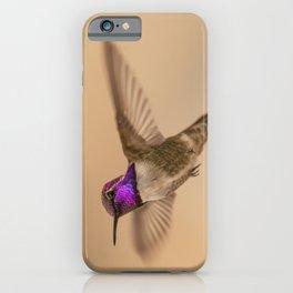 Male Costa's Hummingbird (Calypte costae) iPhone Case