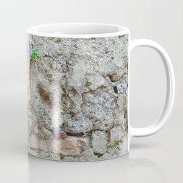 13 - Old World Door Coffee Mug