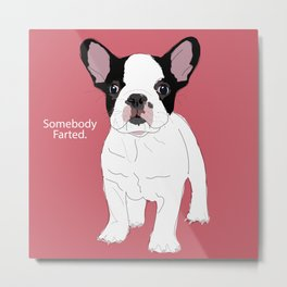 Somebody farted - Frenchie dog (pink) Metal Print