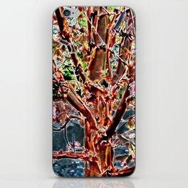 Peeling Tree iPhone Skin