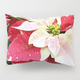 Red and White Poinsettia Pillow Sham