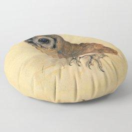 Albrecht Durer The Little Owl Floor Pillow
