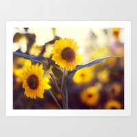 sunflowers Art Prints featuring Sunflowers by elle moss